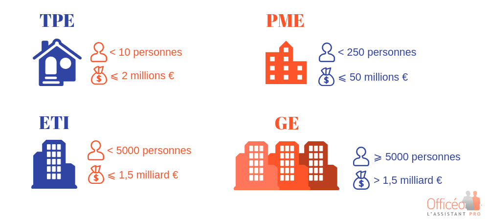 infographie-type-entreprise