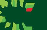 logo_allice