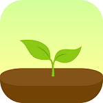 Outils freelance Forest